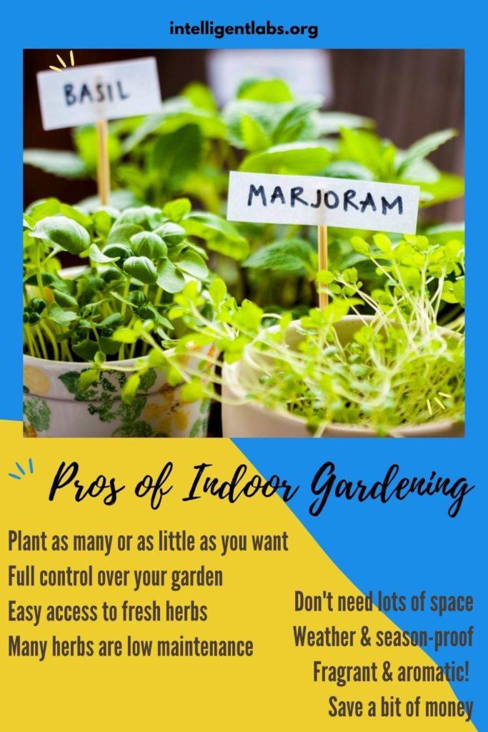 Pros of Indoor Gardening